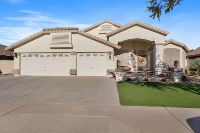Goodyear AZ Single Family Home For Sale: $359,900