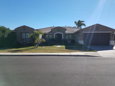 Mesa Single Family Home For Sale: 11415 E Roselle Avenue