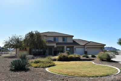 Queen Creek Single Family Home For Sale: 9081 W Prospector Drive