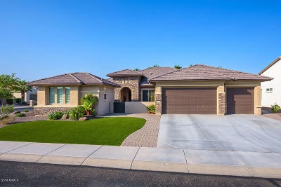 Goodyear AZ Single Family Home For Sale: $729,075
