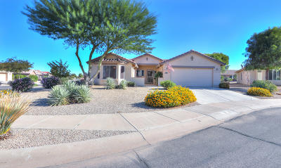 Casa Grande Single Family Home For Sale: 138 S Firerock Court