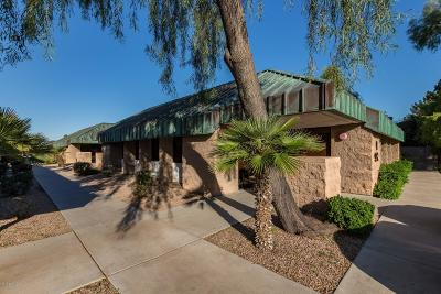 Commercial For Sale: 912 W Chandler Boulevard