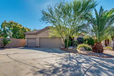 Gilbert Single Family Home For Sale: 779 E Stottler Drive