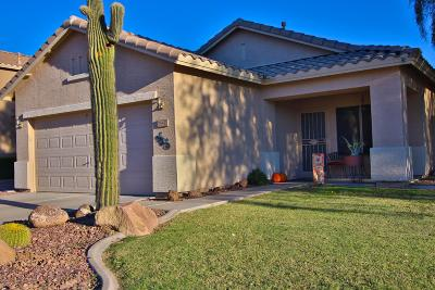 Phoenix Single Family Home For Sale: 25411 N 41st Avenue