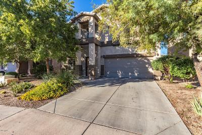 San Tan Valley Single Family Home For Sale: 1130 E Desert Springs Way