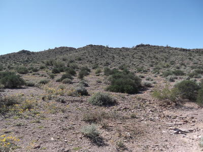 Gold Canyon Residential Lots & Land For Sale: 6605 E Old Camp Road