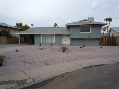 Phoenix Single Family Home For Sale: 3730 W Banff Lane