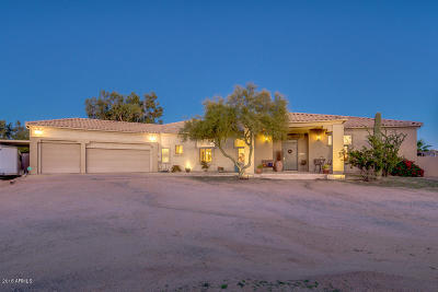 Cave Creek Single Family Home For Sale: 28835 N 64th Street
