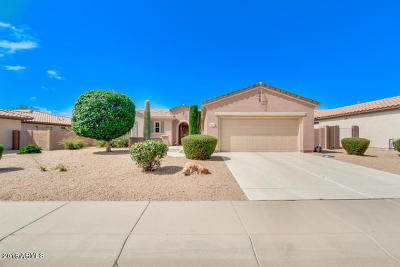 Surprise Rental For Rent: 16417 W Desert Lily Drive