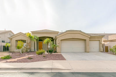 Phoenix Single Family Home For Sale: 401 W Desert Flower Lane