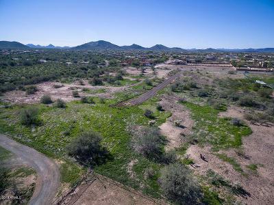 Phoenix Residential Lots & Land For Sale: 1 Acre N 19 Avenue