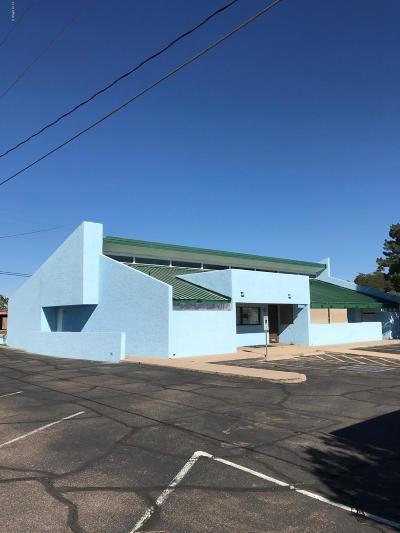 Mesa Commercial For Sale: 1551 E University Drive