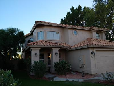 Chandler Single Family Home For Auction: 1610 S Sycamore Place