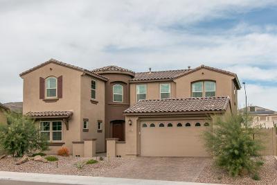Litchfield Park Single Family Home For Sale: 13764 W Sarano Terrace