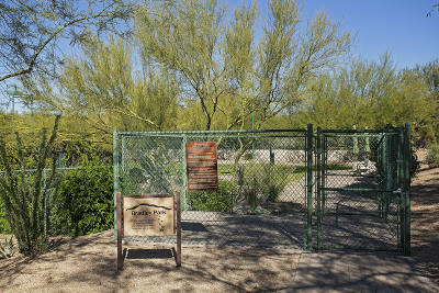 Scottsdale AZ Single Family Home For Sale: $729,000