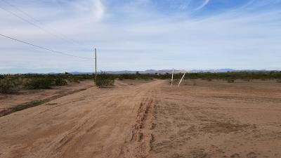 Wittmann Residential Lots & Land For Sale: 302xx N 221st Avenue