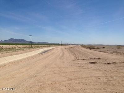 Tonopah Residential Lots & Land For Sale: 52300 W Dobbins Road
