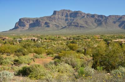 El Mirador At Superstition Mountain Residential Lots & Land For Sale: 6616 E Old Camp Road