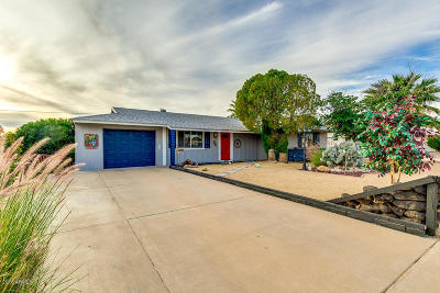 Buckeye, Goodyear, Peoria, Sun City, Sun City West, Surprise Single Family Home For Sale: 11650 N Hacienda Drive