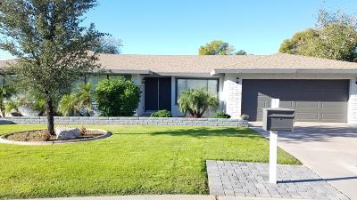 Litchfield Park Single Family Home For Sale: 296 S Hacienda Circle