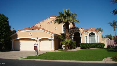 Gilbert Single Family Home For Sale: 1518 E Treasure Cove Drive