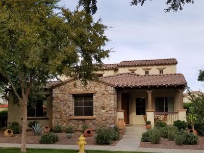 Buckeye Single Family Home For Sale: 20402 W Shadow Street