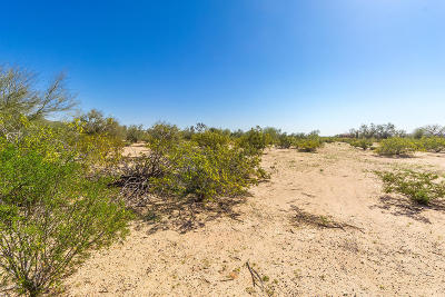 Casa Grande Residential Lots & Land For Sale: 11041 W Ironwood Hills Drive