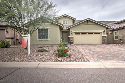 San Tan Valley Single Family Home For Sale: 378 E Castle Rock Road