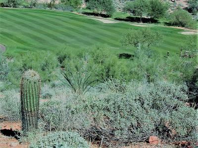 Fountain Hills Residential Lots & Land For Sale: 16128 E Star Gaze Trail W