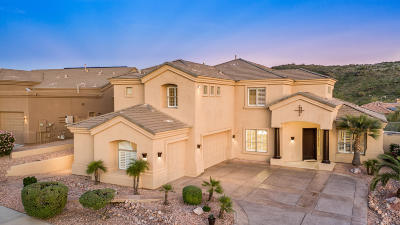 Phoenix Single Family Home For Sale: 223 W Desert Flower Lane