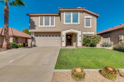 Phoenix Single Family Home For Sale: 4042 E Pinto Lane