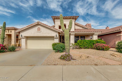 Cave Creek Single Family Home For Sale: 4314 E Desert Marigold Drive