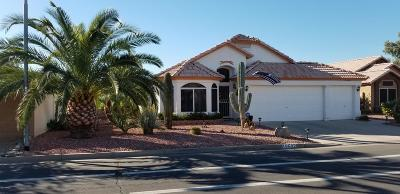 Surprise AZ Single Family Home For Sale: $289,900