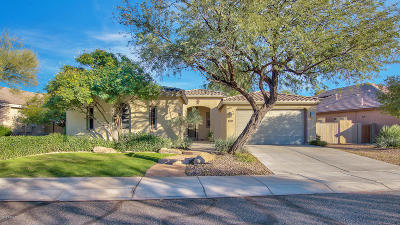 Anthem Single Family Home For Sale: 40325 N Exploration Trail