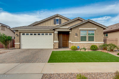 Queen Creek Single Family Home For Sale: 20746 E Canary Way