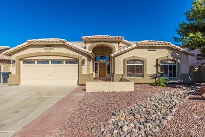 Peoria AZ Single Family Home For Sale: $329,654