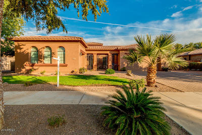 Chandler, Gilbert, Mesa, Queen Creek, San Tan Valley, Scottsdale, Tempe Single Family Home For Sale: 20278 E Camina Plata