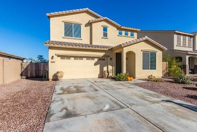 Queen Creek Single Family Home For Sale: 1744 W Cool Water Way