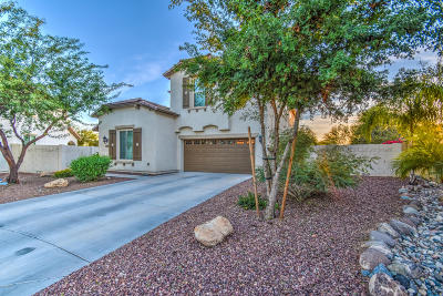 Phoenix Single Family Home For Sale: 4739 W Buckskin Trail