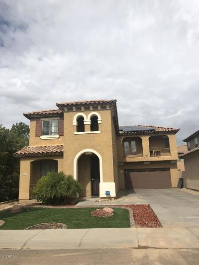 Tolleson Single Family Home For Sale: 9358 W Williams Street