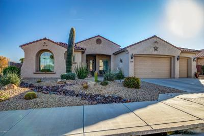 Waddell Single Family Home For Sale: 17927 W Las Palmaritas Drive
