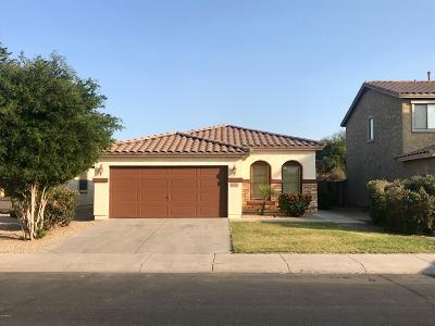 Maricopa Single Family Home For Sale: 20763 N Ancon Avenue