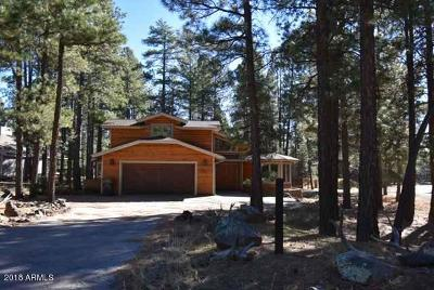 Flagstaff Single Family Home For Sale: 2207 Amiel Whipple