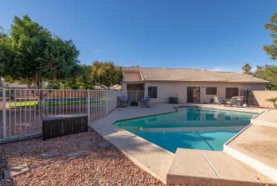 Gilbert Single Family Home For Sale: 1511 E Sunrise Way