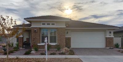 Mesa AZ Single Family Home For Sale: $469,000