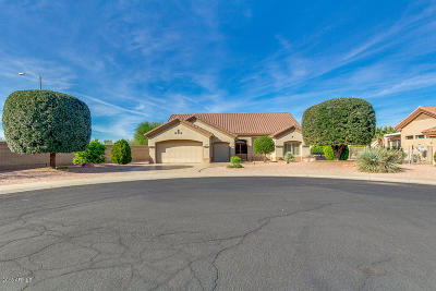 Sun City West Single Family Home For Sale: 14313 W Gunsight Drive