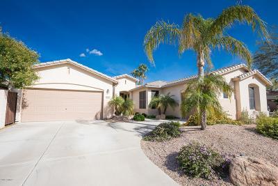 Phoenix AZ Single Family Home For Sale: $405,900