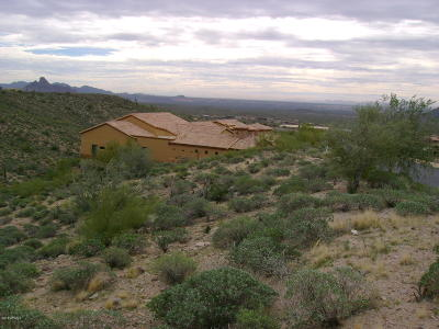 Fountain Hills AZ Residential Lots & Land For Sale: $211,000