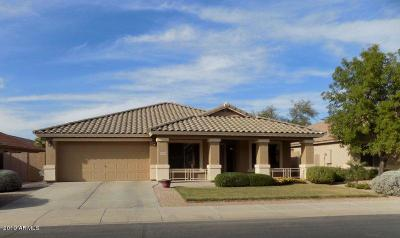 Maricopa Single Family Home For Sale: 43392 W Hillman Drive