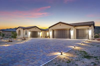 Cave Creek Single Family Home For Sale: 35913 N Prickley Pear Road